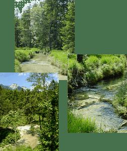 Natur und Wasser